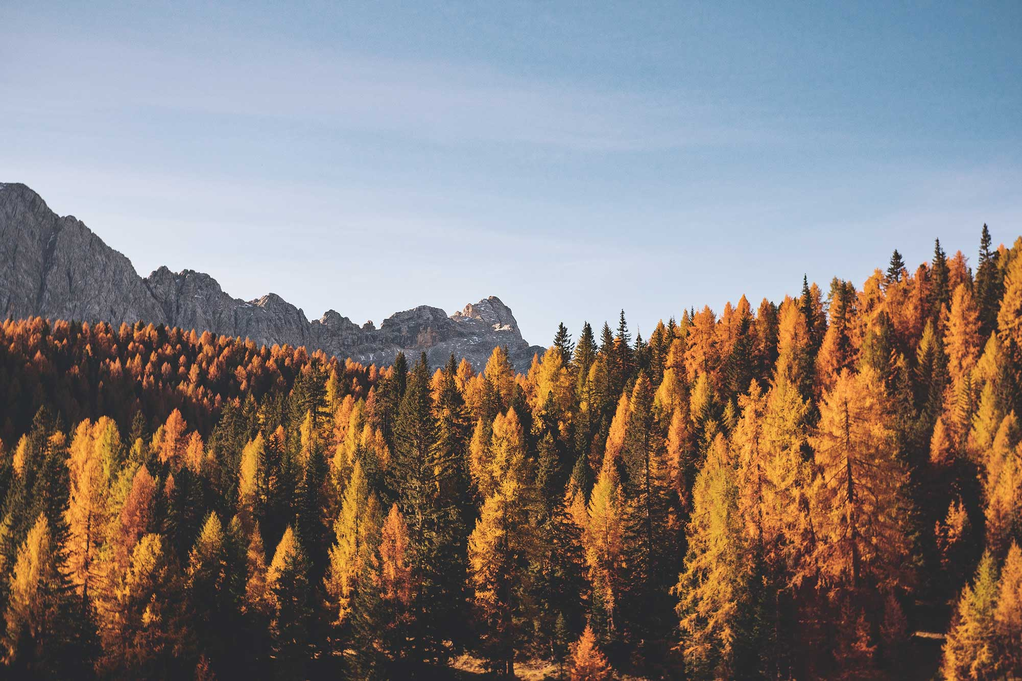 Dolomites in Fall