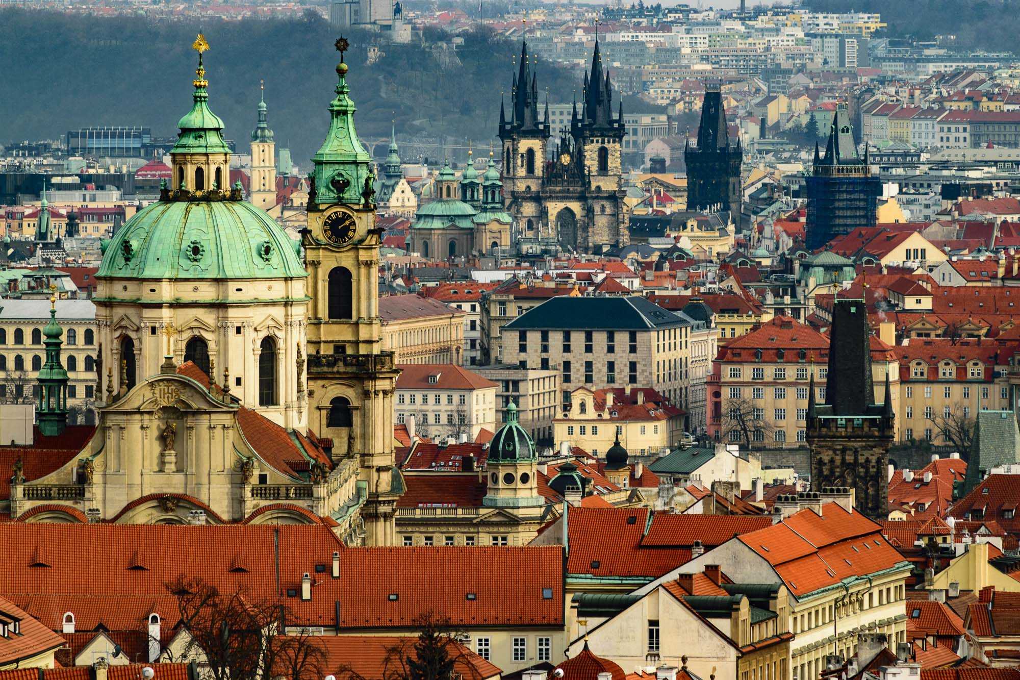 Go Local: Prague