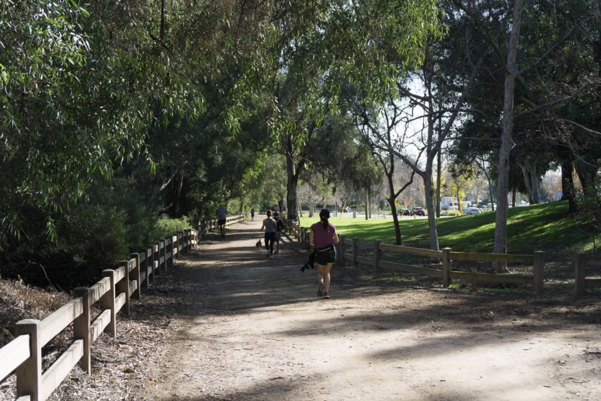 Wide Trail in Griffith Park