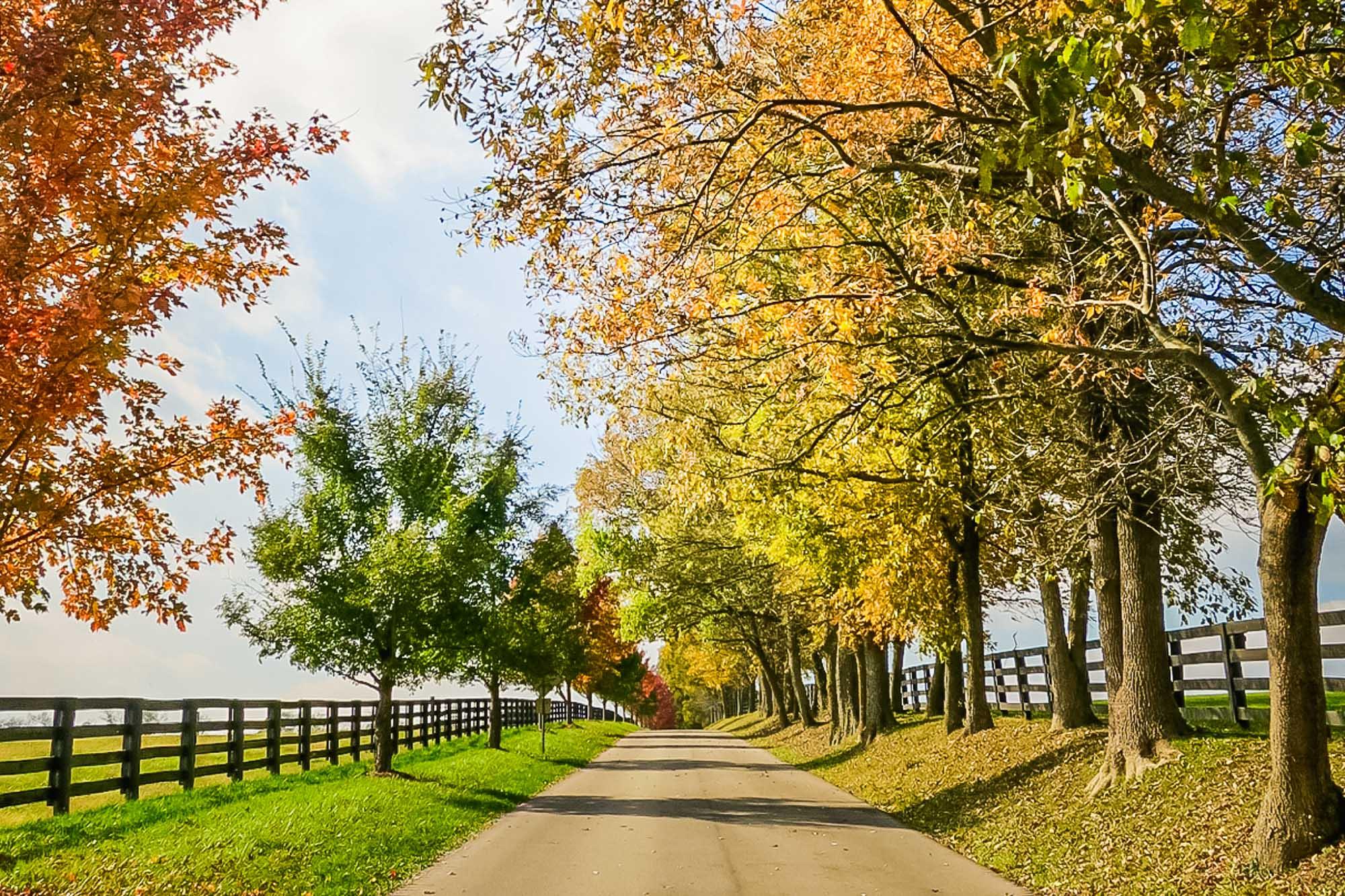 Travel Diary: 3 Days on the Kentucky Bourbon Trail